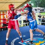 Boxen beim Europa-Straßenfest in Stadtallendorf