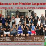 Boxen auf dem Pferdehof Langendorf